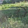 Маскировочная сеть Эталон зеленая_6